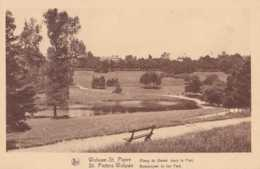 Woluwe-St-Pierre - Etang Du Bemel Dans Le Parc - Pas Circulé - Nels - TBE - Woluwe-St-Pierre - St-Pieters-Woluwe