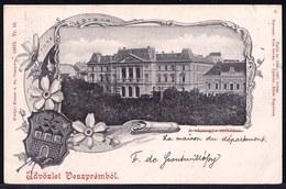 1906 !! Litho Card HONGRIE - HUNGARY -  Üdvözlet Veszpremböl - 2 Scans !! Ambulant Stamp - Hongrie