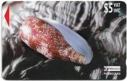 Fiji - Sea Shells Of Fiji - Geography Cone - 25FJC - 1998, 60.000ex, Used - Fiji