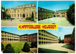 Heusden (Limburg) H Hartcollege (pk55464) - Heusden-Zolder