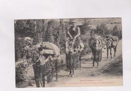 CPA LE COURRIER DE LA SEO DE URGEL  A ANDORRE LA VIELLA En 1926! - Lérida