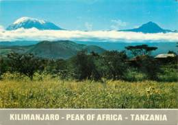 KILIMANJARO - TANZANI - - Tanzanie