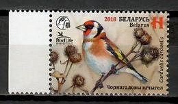 Belarus 2018 Bielorrusia / Birds MNH Vögel Aves Oiseaux / Cu11927  41-4 - Pájaros