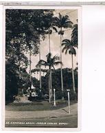 BRESIL CAMPINAS JARDIN CARLOS  GOMES US117 - Brésil