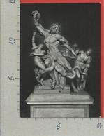 CARTOLINA NV VATICANO - Museo Pio Clementino - Laocoonte - 10 X 15 - Vaticano