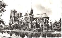 POSTAL   -PARIS  -FRANCIA  -  NOTRE DAME ET ROSACE SUD - Notre Dame De Paris