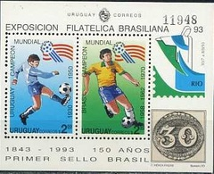 Uruguay, 1993, FIFA World Cup 1994, S\s Block - World Cup