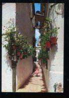 CPM Neuve Espagne Andalousie Calle Tipica Andaluza - Espagne