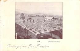 Greetings From San Francisco - Spalier-Obstbau 1900 AKS - Gruss Aus.../ Grüsse Aus...