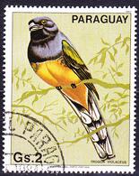 Paraguay - Veilchentrogon (Trogon Violaceus) (MiNr. 3671) 1983 - Gest Used Obl - Paraguay