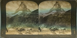 "MATTERHORN FROM SCHWARZSEE HOTEL NEAR ZERMATT, SWITZELAND - ""PERFEC"" STEREOGRAPH YEAR 1903 STEREOSCOPIC PHOTO - LILHU - Stereoscopic"