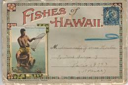 HAWAII - Carte Dépliante-The Waikiki Aquarium Honolulu - Hawaiian Fisherman-Affranchie 5 Cents F.Roosevelt 1920-Poissons - Cartes Postales