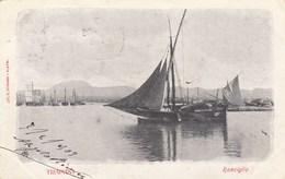 TRAPANI-RONCIGLIO -CARTOLINA VIAGGIATA IL 7-2-1903 - Trapani