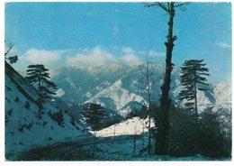 ALBANIA/SHQIPERIA - MOUNTAIN LANDSCAPE / THEMATIC STAMP - Albania