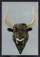87766/ GRECE, *Rhyton De Stéatite En Forme De Tête De Taureau*, Petit Palais De  Cnossos, Héraklion, Musée Archéologique - Antiquité
