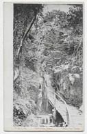 """Kaart Post - Groudle Glen - V. & S.,D. - """"Manx Sun Series"""" - Isle Of Man"""