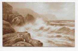 Calf Of Man. I.O.M. - Elmer Keene - Isle Of Man