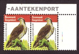 Belgique 2011 Birds - Fish Eagle  Yvert 4071 # MNH # - Neufs