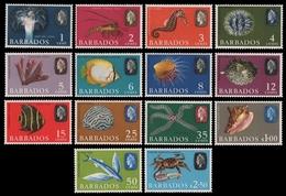Barbados 1965 - Mi-Nr. 235-248 ** - MNH - Meeresleben / Marine Life - Barbados (1966-...)