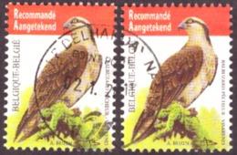 Belgique 2011  Yt N° 4071 Birds - Fish Eagle -TB - - Gebraucht
