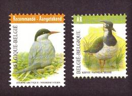 """Belgique 2013  Birds - Registrered Letter Stamp """" Recommandé Cat.v € 12.00 Neuf - Neufs"""