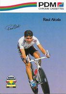 Cycliste: Raul Alcala, Equipe De Cyclisme Professionnel: Team PDM Concorde, Mexique 1990 - Sports