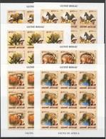ZZ031 !!! IMPERFORATE 2005 GUINE-BISSAU FAUNA WILD ANIMALS OF AFRICA ALBERT SCHWEITZER 9SET MNH - Stamps