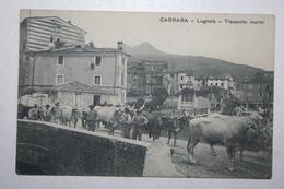 Italie  - Carrara - Lugnola - Trasporto Marmi ( Vue Rare ) - Carrara