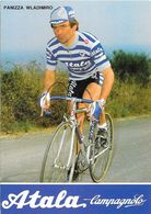Cycliste: Panizza Wladimiro, Equipe De Cyclisme Professionnel: Team Atala Campagnolo, Italie 1984 - Sports