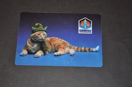 Mini Calendrier 1988 Carte Plastifiée Chaine Gaz Chat En écharpe Et Bonnet - Calendriers