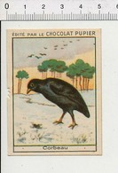 Chromo Chocolat Pupier Corbeau Oiseau 138/24W - Other
