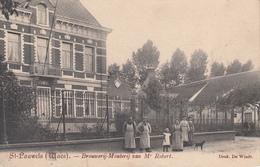 St. Pauweld Waes Brouwerij-Mouterij Van Mr. Robert - Cartes Postales