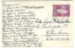 15 Aur ICELAND GEYSIR SOLO On Ppc To Denmark 1938 - 1918-1944 Administration Autonome