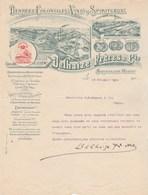 Belgique Lettre Illustrée Lion 24/10/1904 DELHAIZE Denrées Coloniales Vins  BRUXELLES Ouest St André Lez Bruges - Belgique