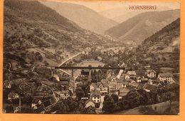 Hornberg Germany 1909 Postcard - Hornberg