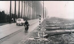 WACHTEBEKE  == +- 1973 FOTO  == FOTO 14 X 8 CM  DE MOOIE DREEF TUSSEN WACHTEBEKE EN MOERBEKE VERDWIJNT - Wachtebeke