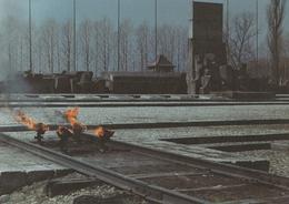 Museum Auschwitz  - Birkenau - Musei