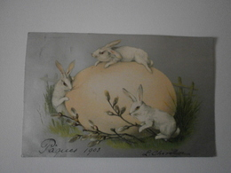 Pâques 1903. Oeuf, Lapins (A5p68) - Easter