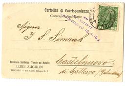 Luigi Zuculin Trieste Company Postcard Travelled WWI 1915 Censored Castelnuovo (Herceg Novi) B190310 - Montenegro