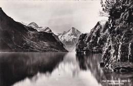 Suisse, Der Bristenstock Vom Rütli Aus (pk56788) - Suisse