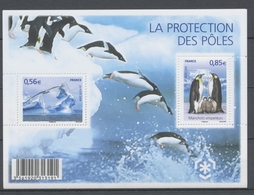 2009  France  BLOC FEUILLET  Protection Des Poles N°4350 YB4350 - Mint/Hinged