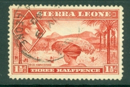 Sierra Leone: 1938/44   KGVI    SG190     1½d   Scarlet   Used - Sierra Leone (...-1960)