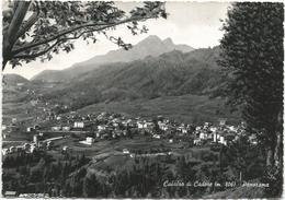 W1895 Calalzo Di Cadore (Belluno) - Panorama / Viaggiata 1962 - Italia
