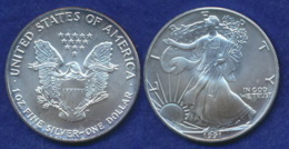 USA 1 Dollar 1991 Liberty Ag999 1oz - 1979-1999: Anthony
