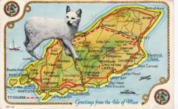 ISLE OF MAN MAP CARD - Isle Of Man