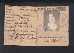 Rheinlandbesetzung Ausweis Frankenthal 1927 - Historical Documents