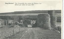 Burg-Reuland - Vue D'ensemble Des Ruines Du Château Fort - Les Editions Arduenna - Burg-Reuland