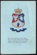 POLAND - POLOGNE -- Armoiries - NIE ZGINELA POLSKA ! RARE ! CARTE GAUFREE - EMBOSSED CARD - Pologne