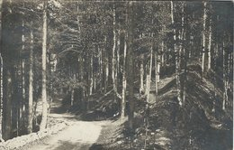 Finland - Postcard  Used 1926.   S-3304 - Finland