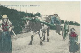 Attelage Ardennais Et Types D'Ardennaises - Phototypie Marco Marcovicci - 1910 - Spannen